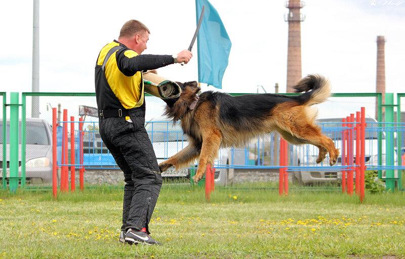 http://img-fotki.yandex.ru/get/6719/155682329.36/0_ac24a_76495201_XL.jpg