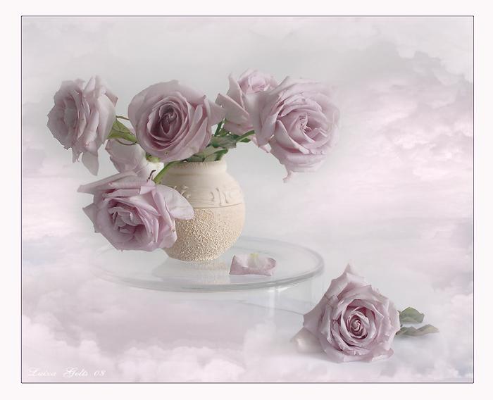 Кажется - розы плывут в облаках