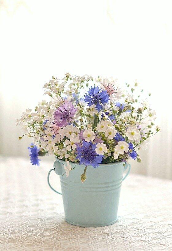 дачные цветочки