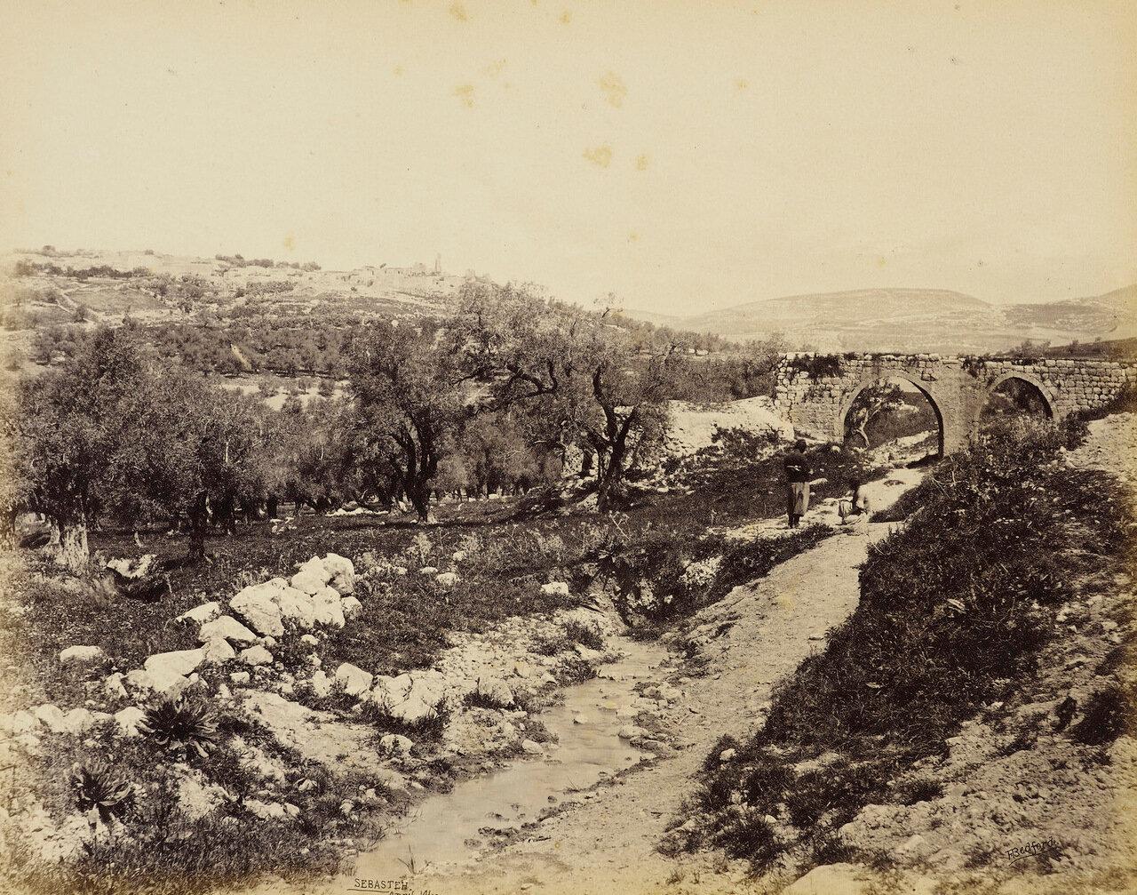 14 апреля 1862. Себастия
