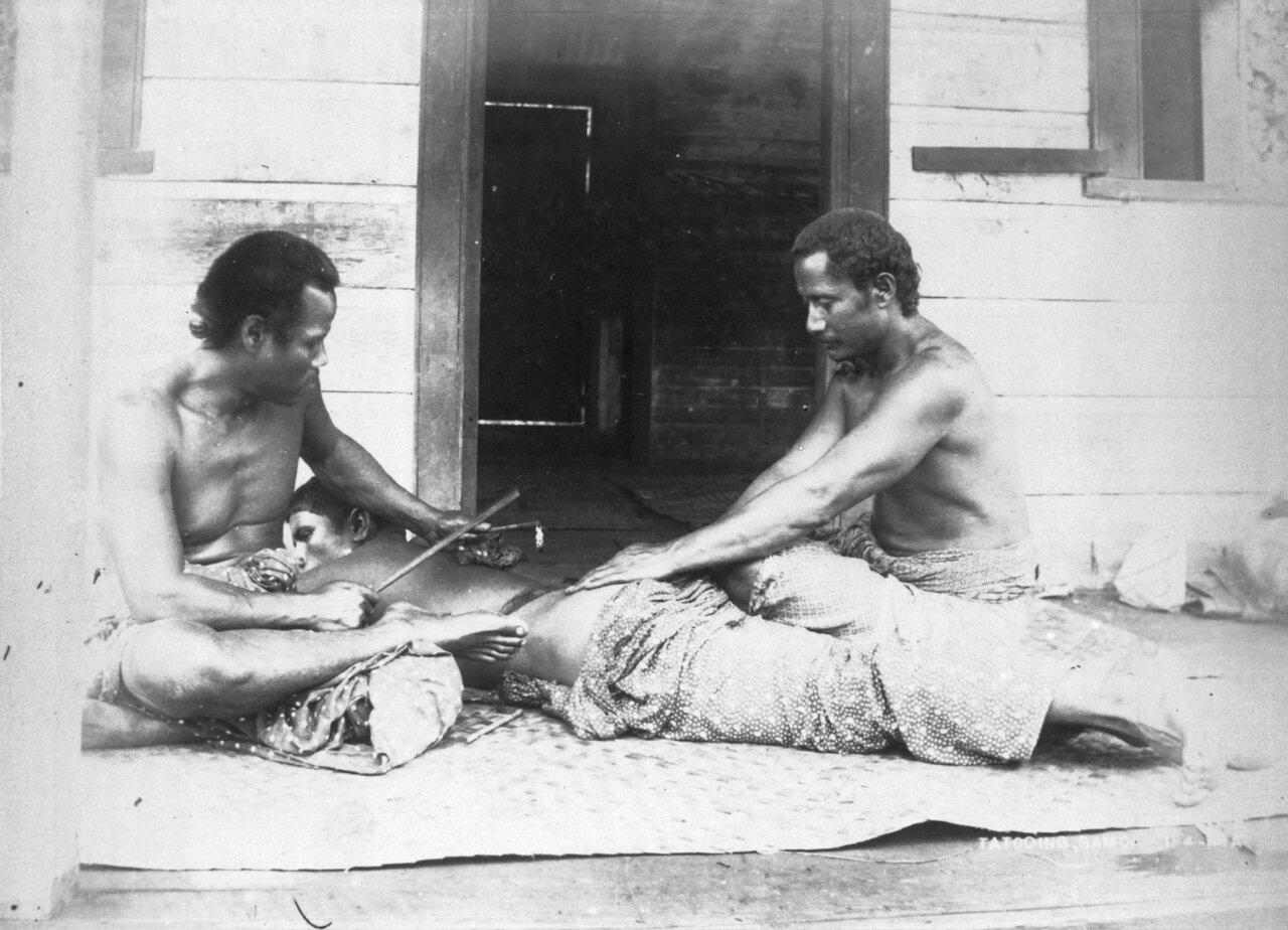 Самоанский татуировщик за работой.1895