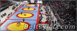 Молдавская спортсменка завоевала титул чемпионки мира
