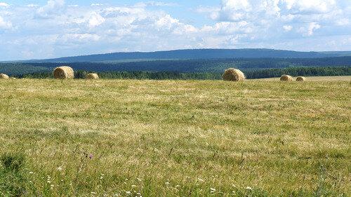 Пейзаж на въезде в село Чусовое