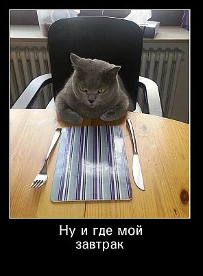 http://img-fotki.yandex.ru/get/6720/236155452.1/0_13950e_55eb3e68_orig.jpg