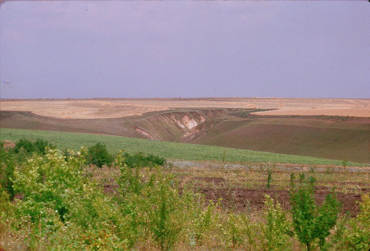 Чернозем и овраги к югу от Курска