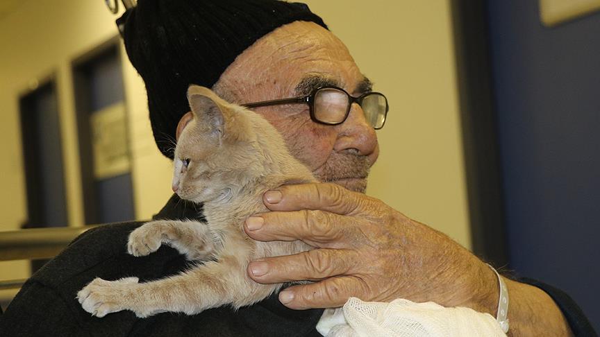 Старик обнимает выжившего котенка после пожара