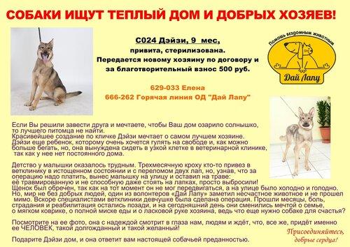 http://img-fotki.yandex.ru/get/6721/5007246.1/0_b9387_ab0c88d0_L.jpg