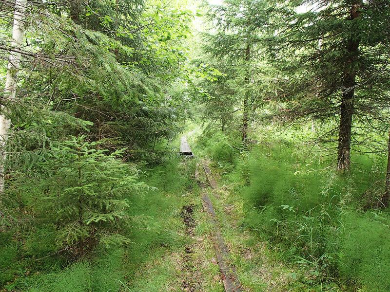 тропа E10 Сювяярви - Руоколахти (Syväjärvi - Ruokolahti)