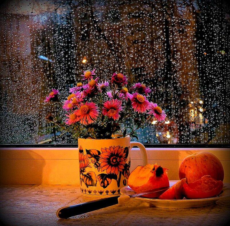 программы специальный красивая живая картинка утро дождь за окном общем давно меня