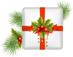 Christmas-gifts (17).png