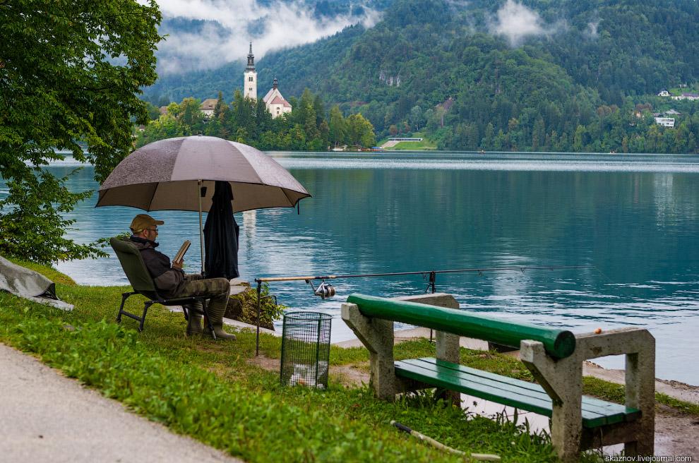 9. На озере обитают многочисленные утки, лебеди и различные виды дичи.