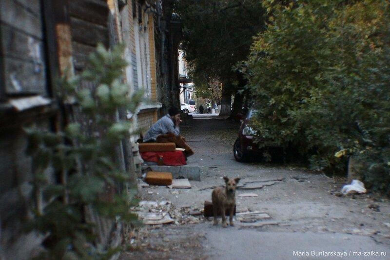 Бомжи повыползали, Саратов, Комсомольская, 21 октября 2015 года