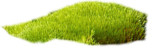 Holliewood_SpringFaeries_Grass10.png