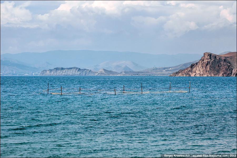 Релакс рыболовных сетей
