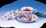 чай-5118_TeaPicturesandWallpapersno90.png