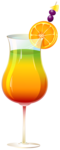 Exotic_Cocktail_PNG_Clipart-548.png