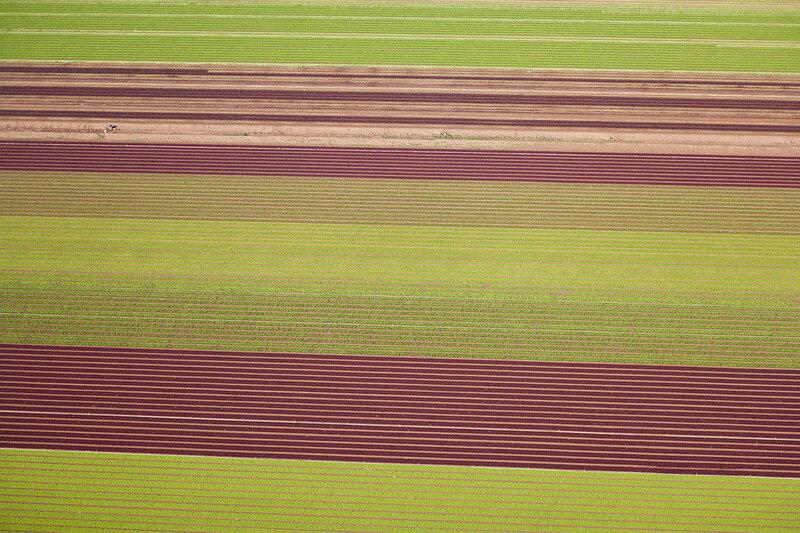 Кэмерон Дэвидсон и его художественная аэрофотосъёмка 0 1c43e6 e08f5dee XL