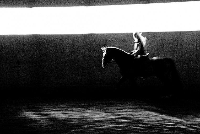 «Занятия по конному спорту в крытом манеже».