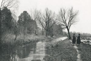 1894. На берегу реки
