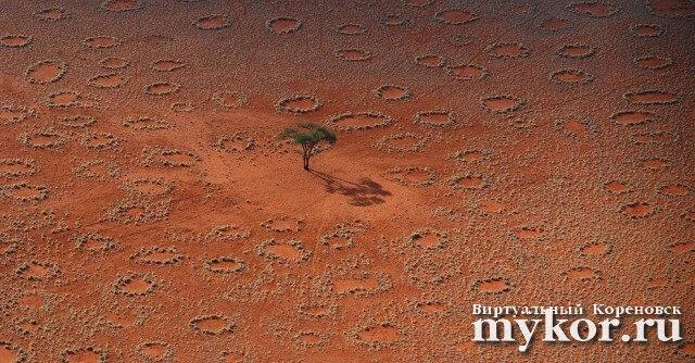 Волшебные круги в Намибии фото
