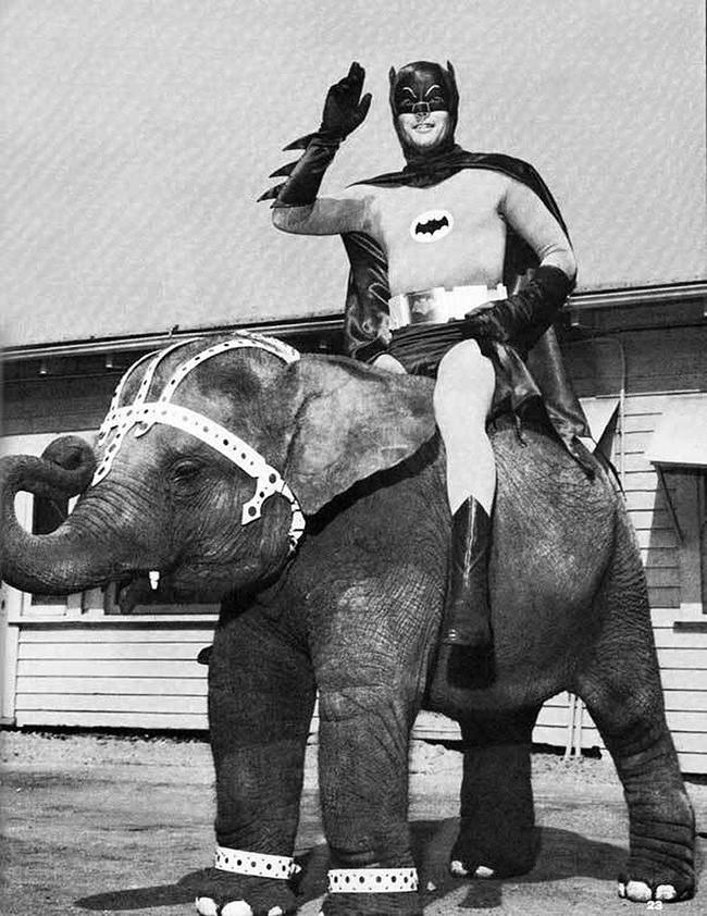 Всего лишь Бэтмен на слоне, 1967 год.