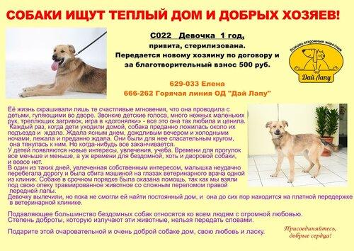 http://img-fotki.yandex.ru/get/6723/5007246.1/0_b9386_4888840d_L.jpg