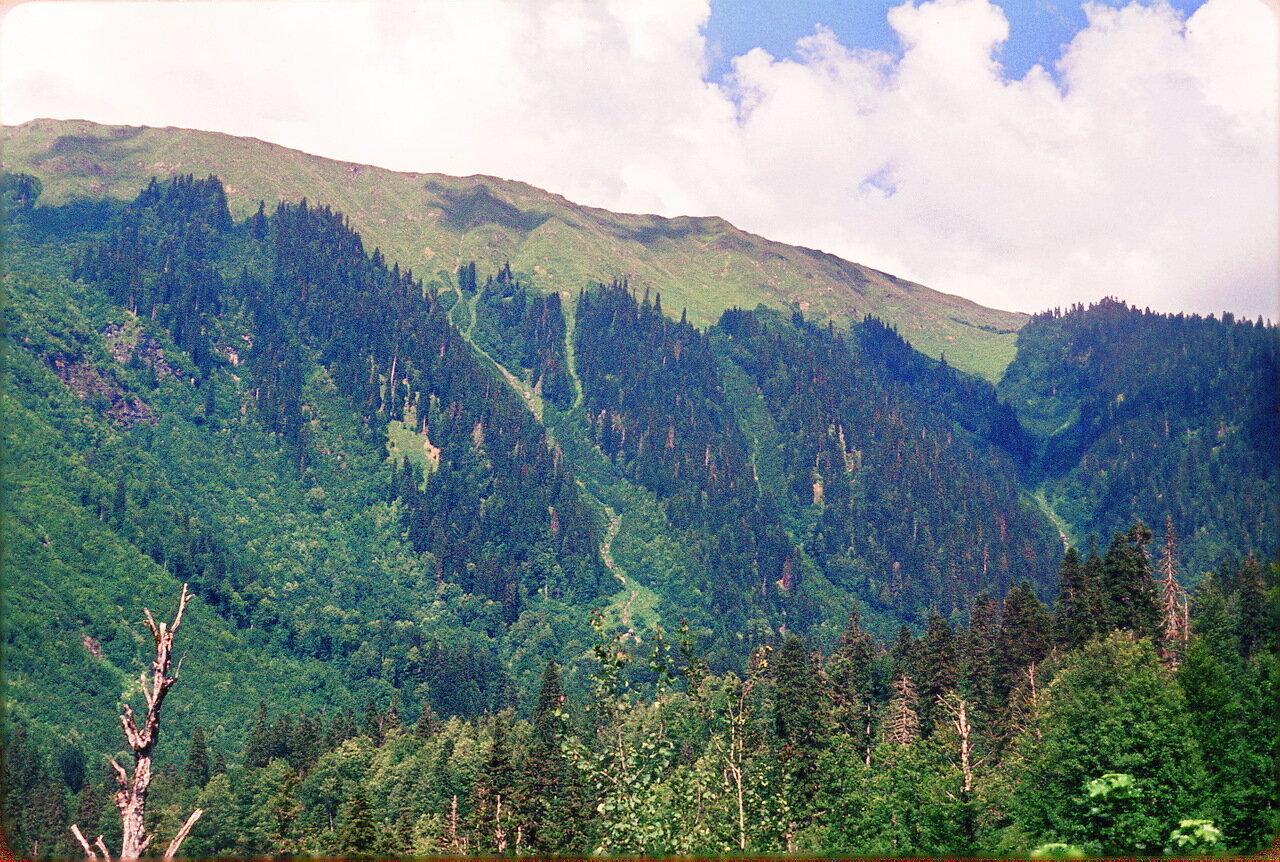 Абхазия. Ацетук и край леса