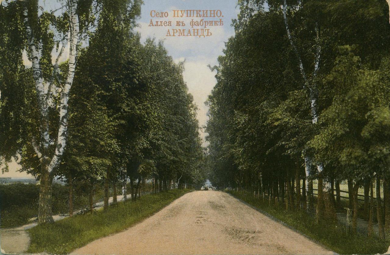 Окрестности Москвы. Пушкино. Аллея к фабрике Арманд