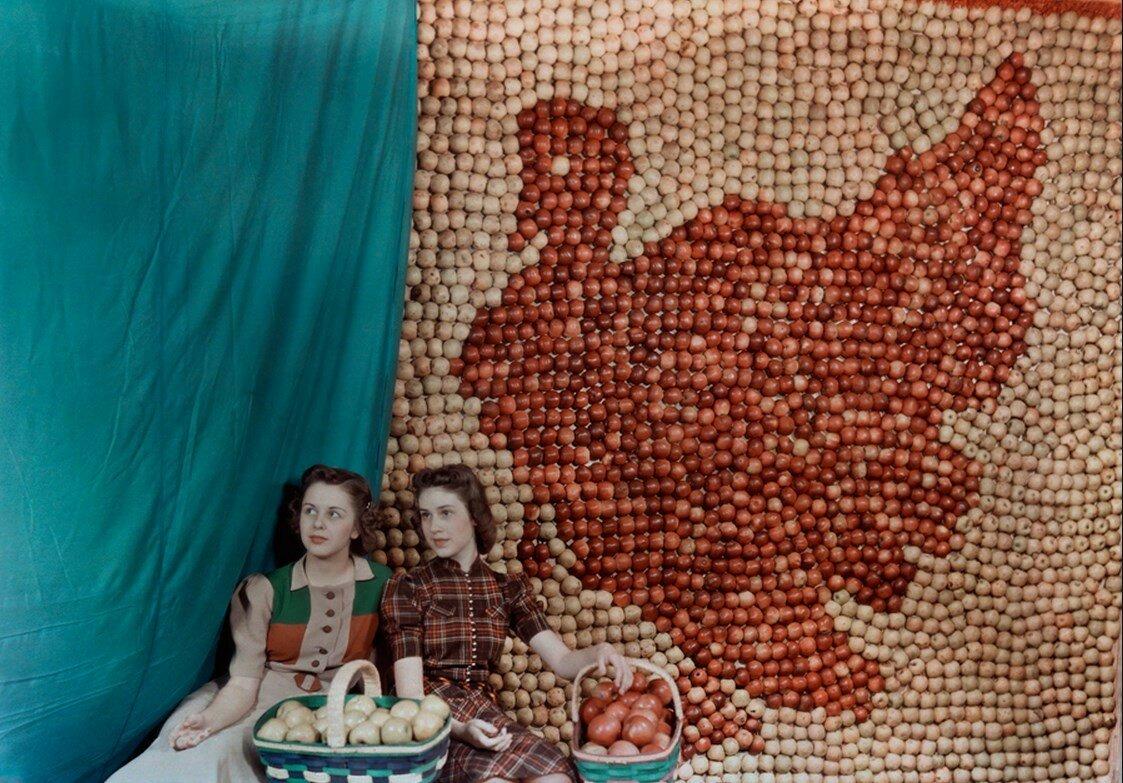 1939. США. Две девушки сидят возле сделанного из яблок панно в форме индейки в Западной Вирджинии