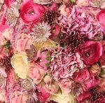 roses (4).jpg