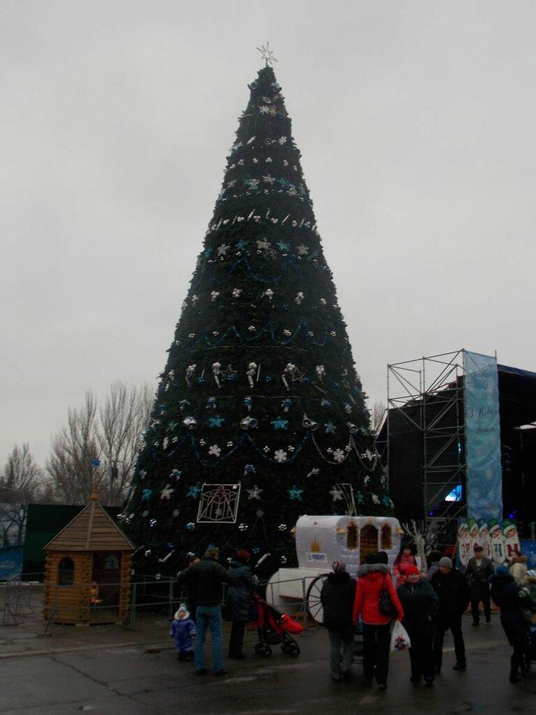 В Запорожье  главную городскую ёлку «зажгли» волшебным посохом (ФОТО), фото-3
