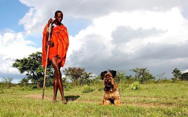 Путешествие с собакой - приключения Оскара и его хозяйки
