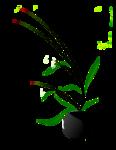 nicole-vase2-2012.png