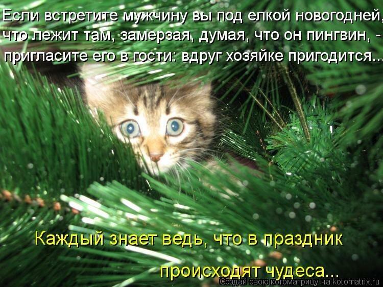 https://img-fotki.yandex.ru/get/6724/164407345.33/0_db916_da081796_XL.jpg
