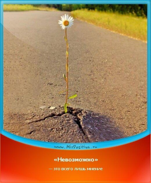 позитивчик дня: «Невозможно» — это всего лишь мнение