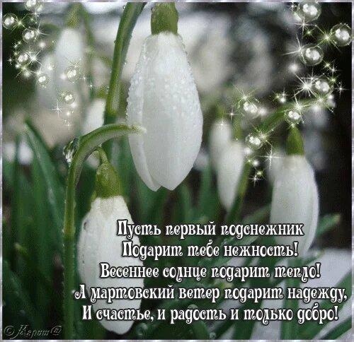 Про весну открытка поздравление картинка