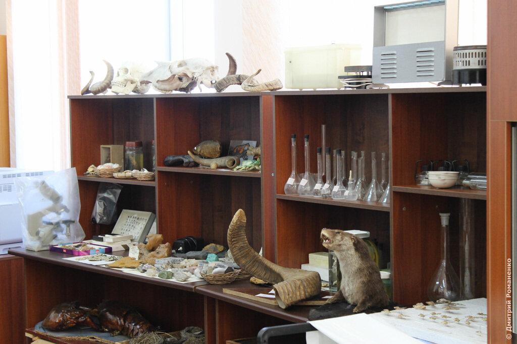 музей природы белгорья, прохоровский район