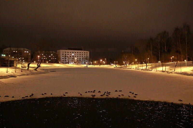 Нижний пруд в свете ночных фонарей. Вид от мостика у водопада