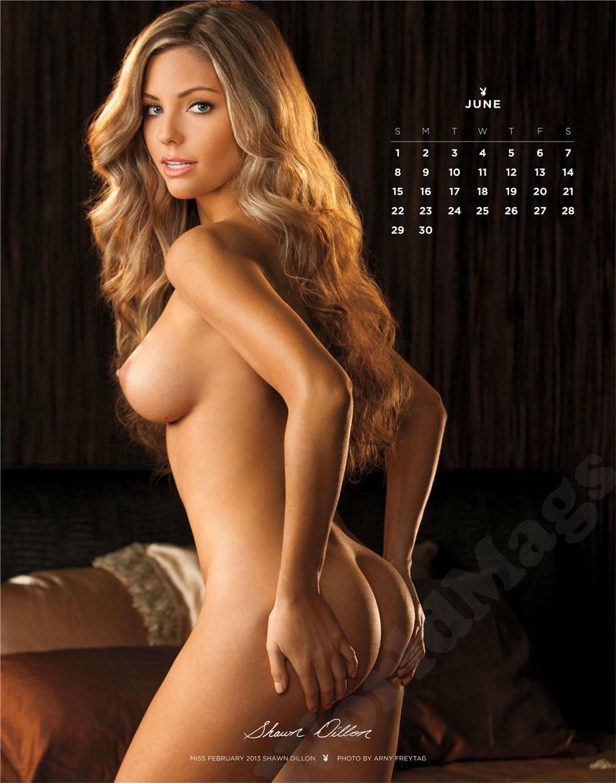 june - Playboy USA playmate calendar 2014 / Shawn Dillon - Miss February 2013