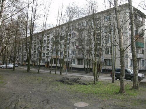 Лужская ул. 12