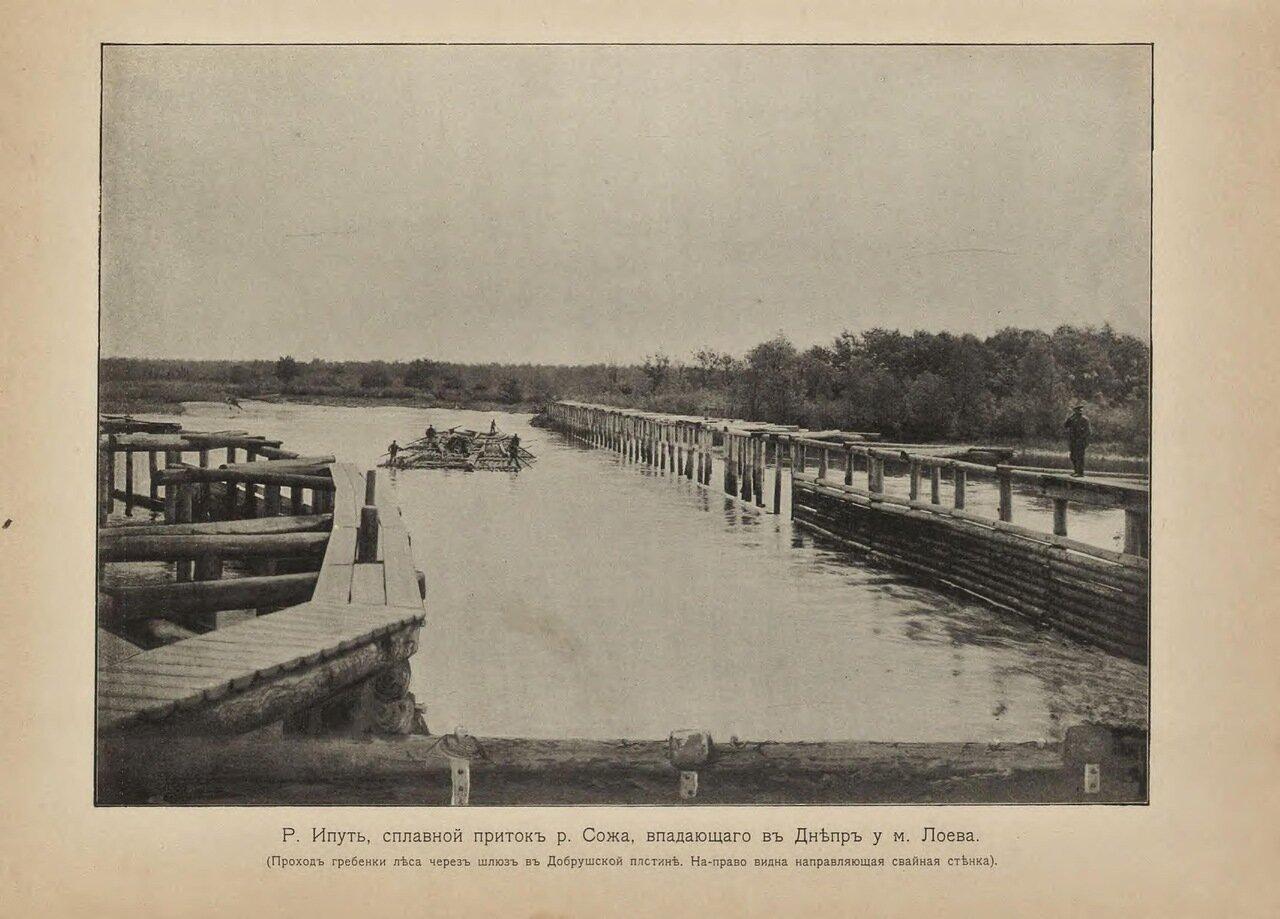 Ипуть, сплавной приток реки Сожа, впадающего в Днепр у м.Лоева