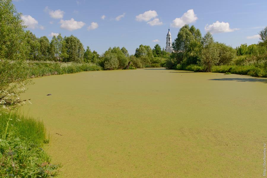 болото в кременках