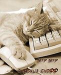 Доброй ночи рисунок поздравление открытка фото картинка