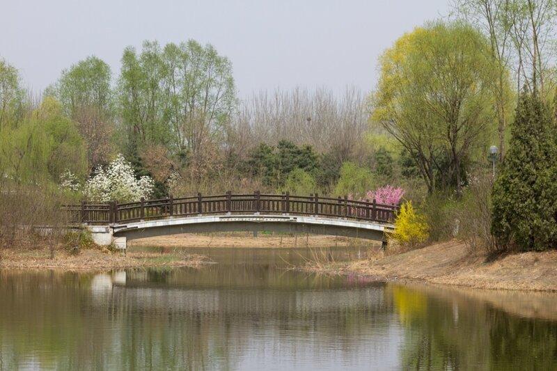 Мост, Олимпийский парк, Пекин
