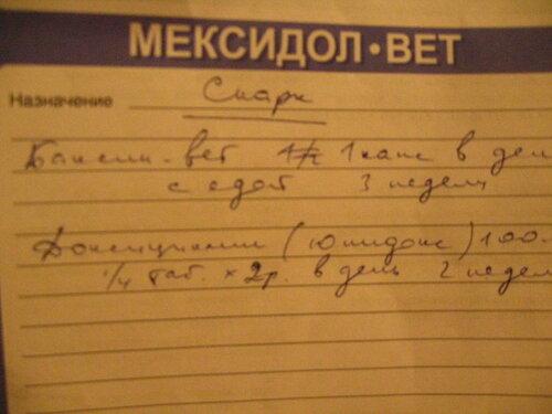 http://img-fotki.yandex.ru/get/6725/50951434.b/0_cf23b_dfb63229_L.jpg