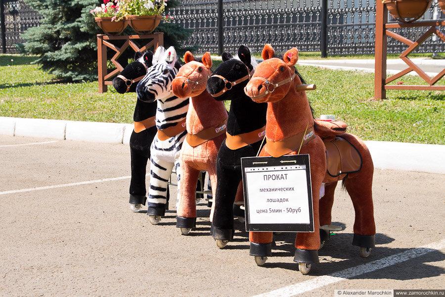 Прокат механических лошадок | Rent-a-horse