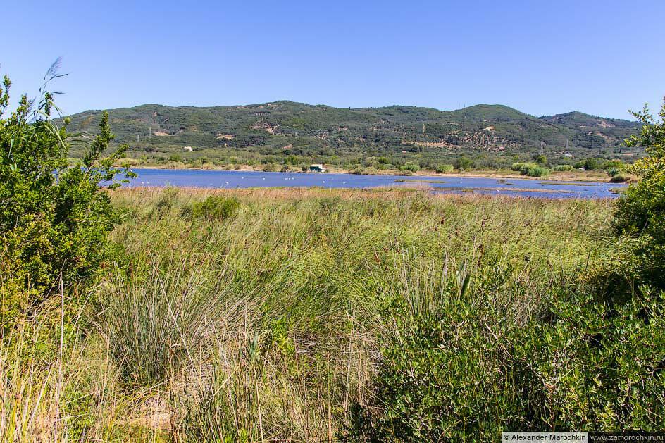 Берега озера Кориссион (Корфу)