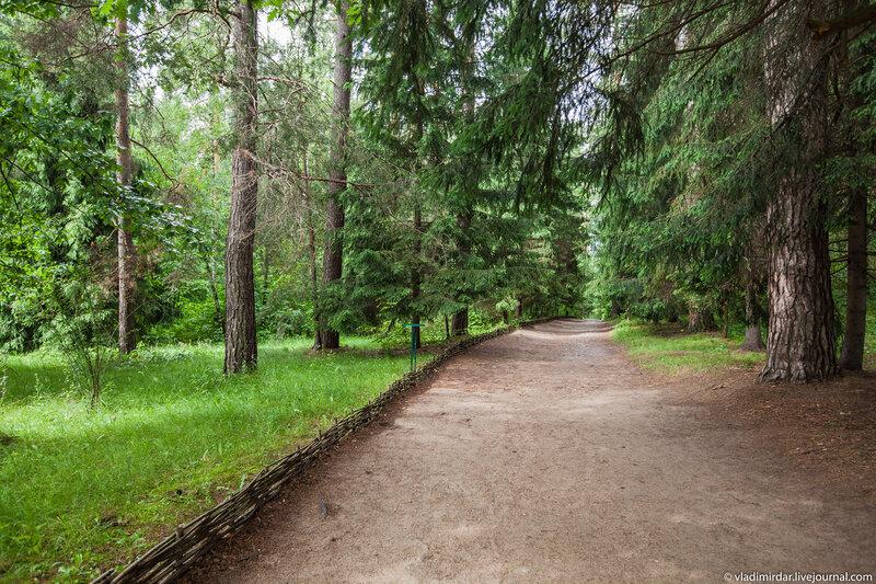 Аллея в парке Поленово