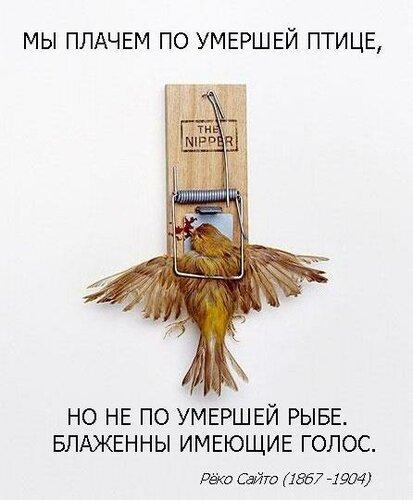 РЁКО САЙТО