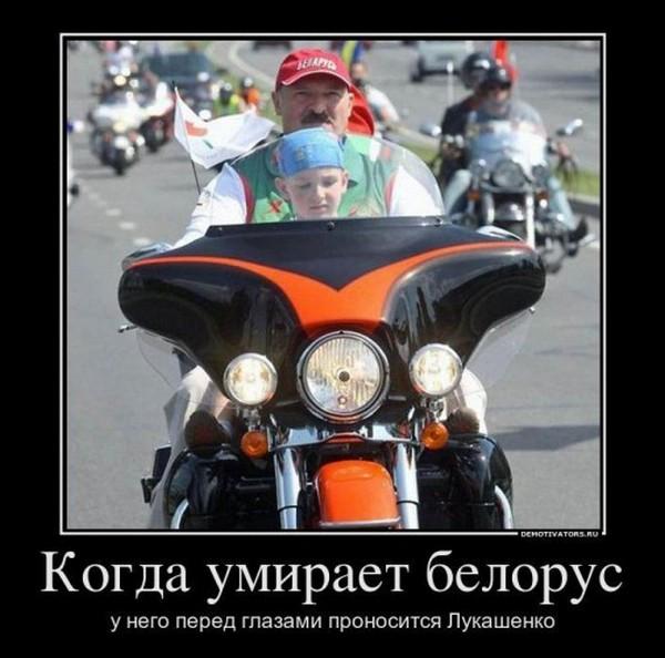 Видео приколы про лукашенко ...: pictures11.ru/video-prikoly-pro-lukashenko.html